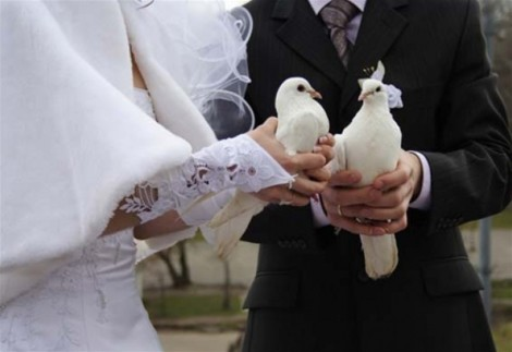perejyt-svadbu